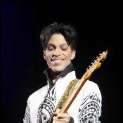 Prince exceptionnel sur Canal +... Michel Denisot en perd les pédales !