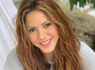 """Shakira : Métamorphosée avec des cheveux rouges, """"l'idée était que ce soit plus rose"""""""