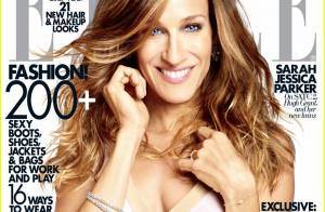 Sex and the City 2 : Sarah Jessica Parker
