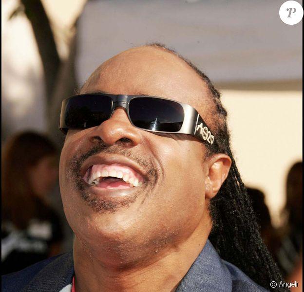 Stevie Wonder est nommé Messager de la paix par les Nations Unies, le 1er décembre 2009.