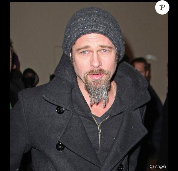 Brad Pitt et sa barbichette
