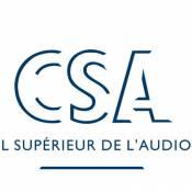 Après Claire Chazal, c'est sur Christophe Hondelatte et Harry Roselmack... que le CSA se déchaîne !