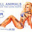 Pamela Anderson pour PeTA, campagne interdite au Canada, juillet 2010