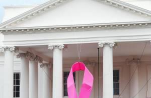 La Maison Blanche va devenir... rose !