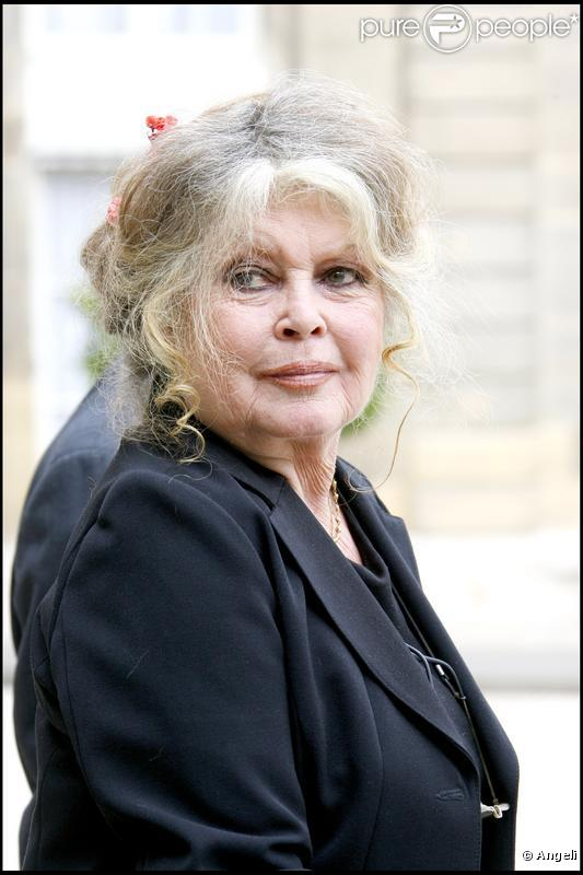brigitte bardot le litige est r gl son expo reprend du service purepeople. Black Bedroom Furniture Sets. Home Design Ideas