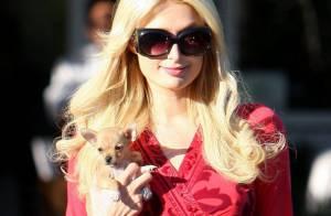 Paris Hilton : Carrément ridicule pendant ses travaux d'intérêt général !