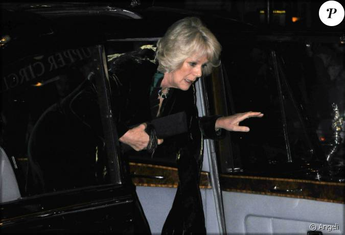 la voiture du prince charles et de camilla attaqu e par des manifestants londres 9 12 2010. Black Bedroom Furniture Sets. Home Design Ideas
