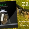 Zazie -  Chanson d'amour (radio edit)  - mars 2011