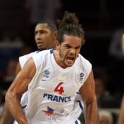 Euro de Basket 2011 : cruelle désillusion pour l'équipe de France