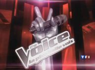 The Voice : Après Florent Pagny, une star internationale intègre le jury