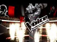 The Voice : Entrez dans les coulisses du nouveau phénomène télé !