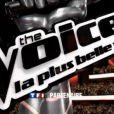 The Voice  - les dates de la tournée d'été avec les huit finalistes