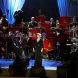 Susan Boyle a interprété une reprise de  Wild Horses , des Rolling Stones, le 13 mai 2012 lors du  Diamond Jubilee Pageant , formidable spectacle équestre donné à Windsor en l'honneur du jubilé de diamant de la reine Elizabeth II, joué par plus de 550 chevaux et 1100 artistes du monde entier.