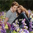 Kristen Stewart et Robert Pattinson dans  Twilight - Chapitre 5 : Révélation 2e partie , en salles le 14 novembre.