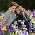 Kristen Stewart et Robert Pattinson dans la saga  Twilight.
