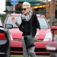 La chanteuse Pink et sa fille Willow vont faire du shopping à Malibu, le 17 décembre 2012. La maman a effectué cette sortie sans son mari.