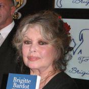 Brigitte Bardot soutient Gérard Depardieu et s'en prend à Philippe Torreton !