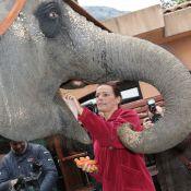 Stéphanie de Monaco fait son numéro avec un éléphant pour le Festival du cirque