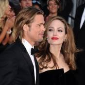 Angelina Jolie et Brad Pitt : Nouveau défi pour le couple, le business du vin