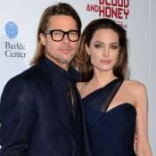Brad Pitt et Angelina Jolie : Leurs 6 000 bouteilles de vin rosé vendues en 5h
