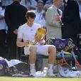 Andy Murray lors de sa victoire en finale de Wimbledon face à Novak Djokovic (6-4, 7-5, 6-4), au All England Lawn Tennis and Croquet Club de Londres le 7 juillet 2013