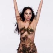 Lady Gaga nue... La princesse ARTPOP dans toute sa splendeur