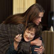 Sorties cinéma : Meryl Streep, Liam Neeson, Dany Boon et un ''Grand Hotel''
