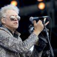 Bob Geldof en concert au Festival de l'Ile de Wight, le 16 juin 2013.