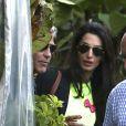 George Clooney célèbre ses fiançailles avec Amal Alamuddin entouré de ses amis au Cafe Habana à Malibu (Los Angeles) le 11 mai 2014