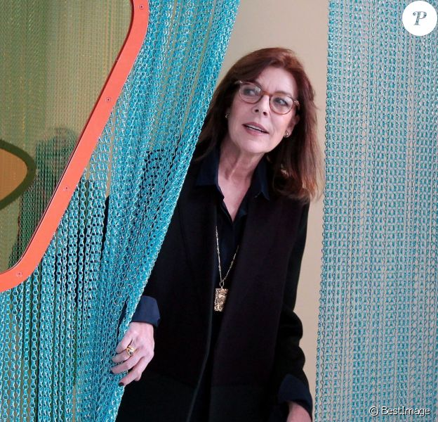 La princesse Caroline de Hanovre découvrait le 20 janvier 2015 l'exposition ''Construire une collection'' à la Villa Paloma, au Nouveau Musée National de Monaco.