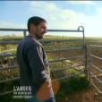 Manu, dans  L'amour est dans le pré - seconde chance , le lundi 7 décembre 2015 sur M6.