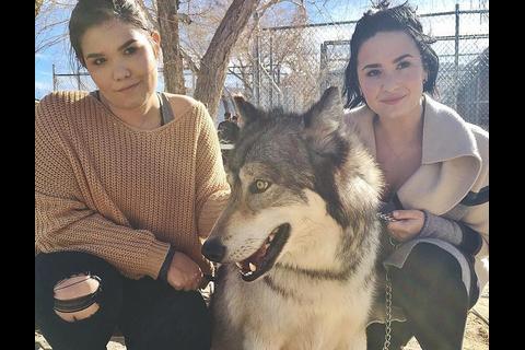 Demi Lovato sur le territoire des loups pour l'anniversaire de Wilmer Valderrama