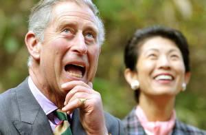 REPORTAGE PHOTOS : Le prince Charles et Camilla au Japon, day 3 : chacun de son côté, c'est bien aussi pour s'amuser !