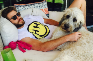 Miley Cyrus et Liam Hemsworth en couple : La popstar officialise sur Instagram