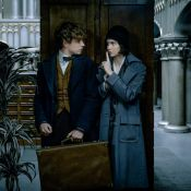 """Harry Potter : """"Les Animaux Fantastiques"""" se déchaînent dans la bande-annonce"""