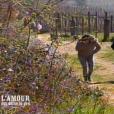 """Laeticia, Karine et Bruno - """"L'amour est dans le pré 2016"""" sur M6. Le 29 août 2016."""