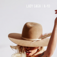 "Lady Gaga topless sur la pochette de son nouveau single ""A-Yo""."