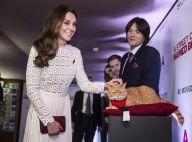 Kate Middleton sublime et les jambes à l'air, Bob le chat se laisse amadouer