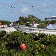 Le prince Harry visite les mangroves à La Barbade, pour voir les oiseaux frégatidés, à l'occasion de son voyage de 15 jours dans les Caraïbes. Le 22 novembre 2016  Prince Harry takes a boat tour through mangroves on the island of Barbuda to see one of the largest colonies of frigate birds in the word, as he continues his tour of the Caribbean.22/11/2016 - La Barbade