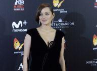 Marion Cotillard enceinte et décolletée : La future maman toujours plus belle