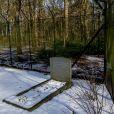 La tombe du prince Friso d'Orange-Nassau au cimetière de Lage Vuursche, le 15 février 2017, le jour du 5e anniversaire de son accident de ski tragique survenu à Lech am Arlberg. Enseveli sous une avalanche, le fils de Beatrix des Pays-Bas était resté dans le coma dix-huit mois avant de s'éteindre le 12 août 2013.