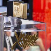 Cannes 2017 : La valse des prix a commencé, le palmarès se précise !