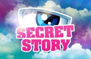 Secret Story 11 : Deux candidats éliminés déjà au casting d'une autre émission !