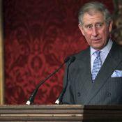 Le Prince Charles élu... homme le mieux habillé du monde ! Mouais...
