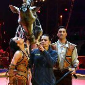 Stéphanie de Monaco dresseuse de girafe... sans Pauline, une vraie gazelle !