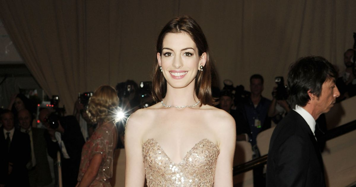 anne hathaway en valentino pour le met gala 2010 purepeople. Black Bedroom Furniture Sets. Home Design Ideas