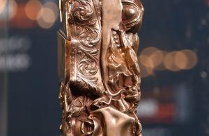 César 2019 - La cérémonie : Sacre et larmes pour