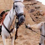Johnny Depp et la malédiction de Don Quichotte... Terry Gilliam remet ça !