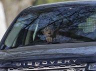 James, fils du prince Edward : 11 ans et déjà au volant d'un Land Rover !