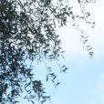 Exclusif - Laura Tenoudji Estrosi et sa fille Bianca - Christian Estrosi, le maire de Nice, et sa femme Laura Tenoudji ont fêté en famille le 1er mai dans les jardins de Cimiez pour la Fête des Mai à Nice, le 1er mai 2019. le maire a officiellement ouvert la Fête des Mai. © Bruno Bebert/Bestimage